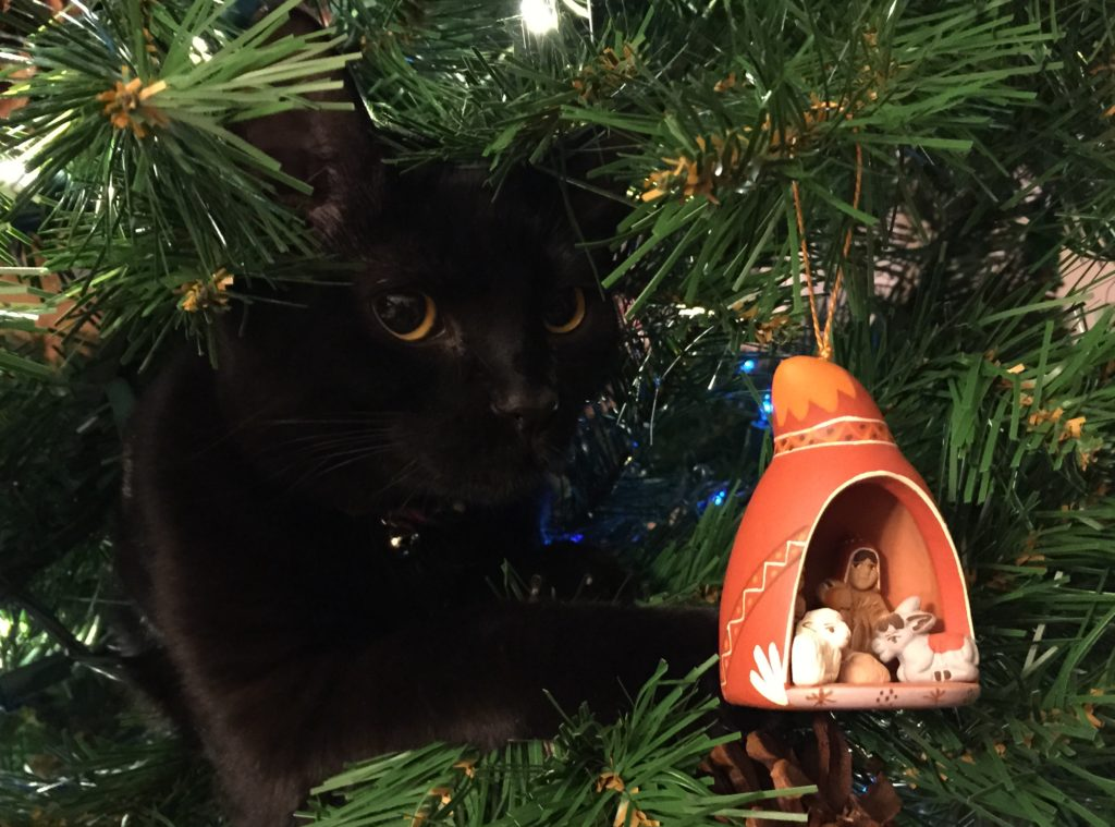 Black cat perched in Christmas tree with nativity scene ornament in the foreground.